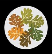 Scenic Oaks Funding logo